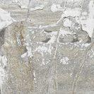 XStone Grey R11 25x25 cm